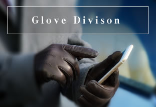 Glove Division